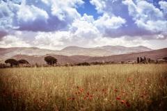 2019_05_17-25_Italien_DSC05232.jpg